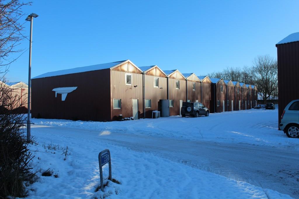 Vinterhallerne i vintertøj